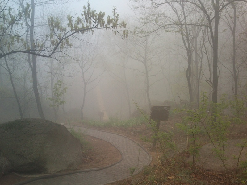 Mystische Landschaft im Nebel